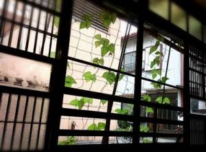 zansyomimai-jiki-kakikata
